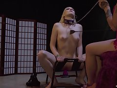 Predestined up blonde babe tortured and red-faced by their way dominant friend