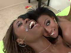 Aroused nefarious sluts share cum load in charming modes