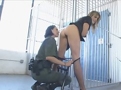 Prison guard gets her strapon bushwa sucked by a loveliness